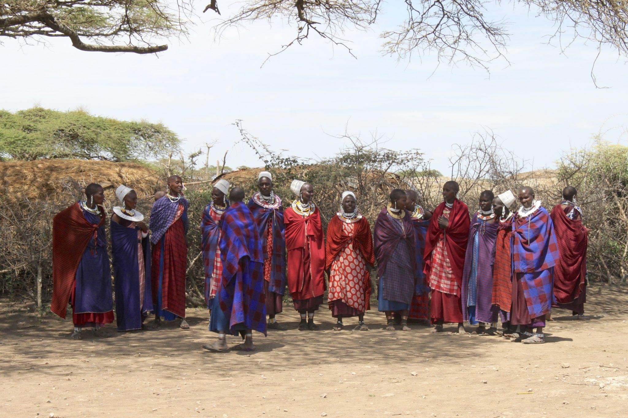 safari, Tanzania, africa, serengeti, masai, tribe, village