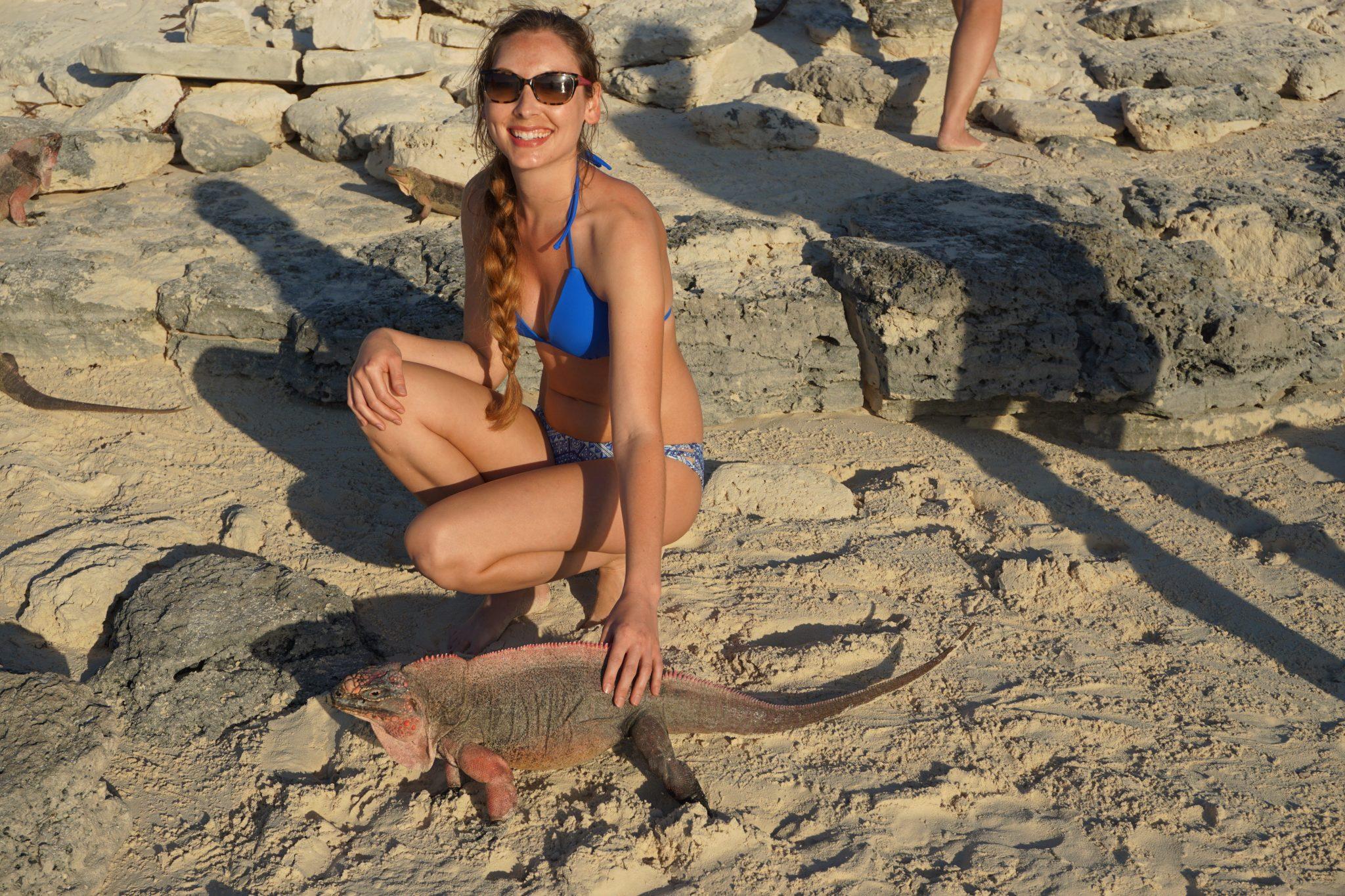 exuma, bahamas, iguanas, iguana beach