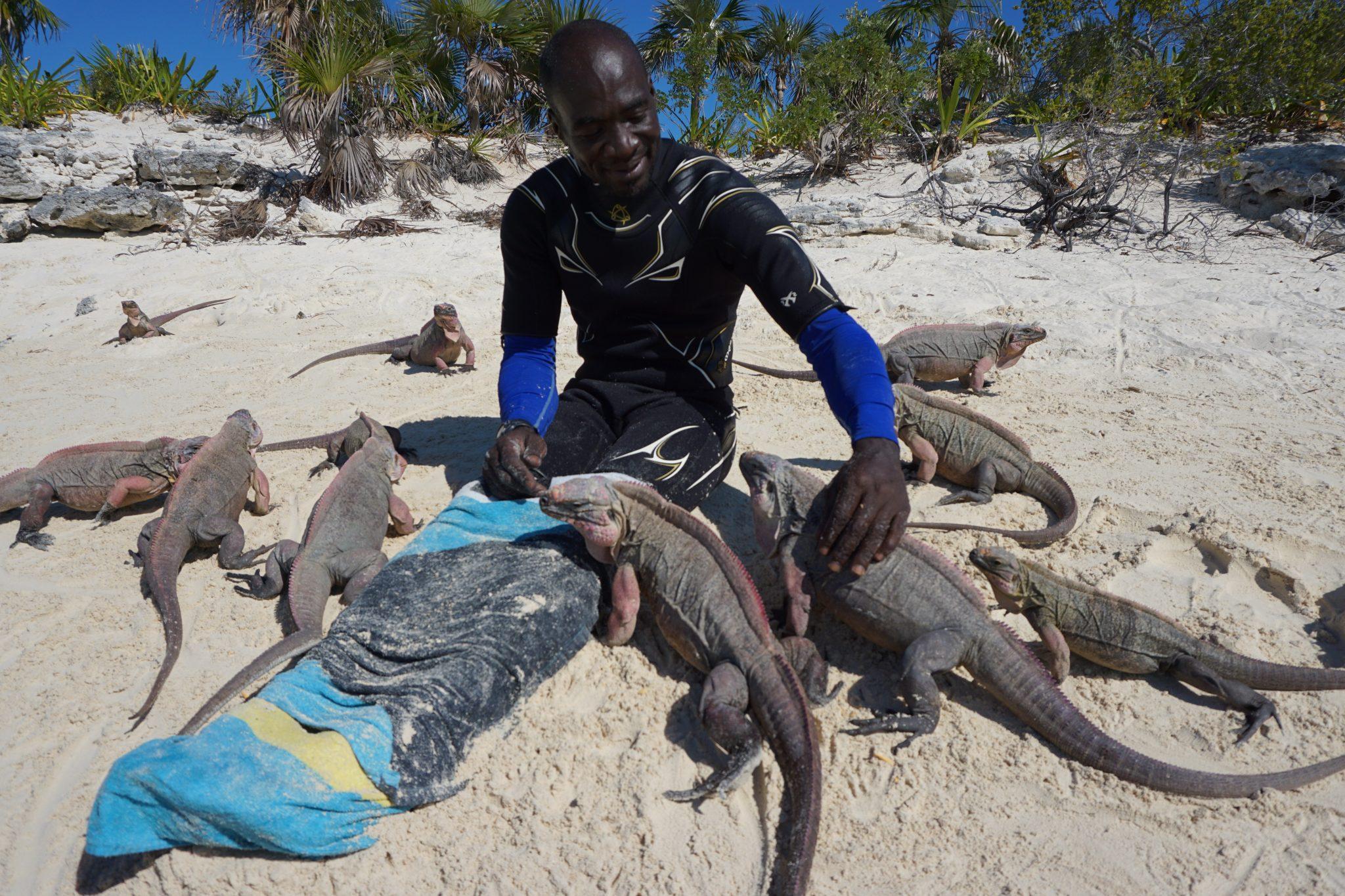 exuma, bahamas, iguana beach