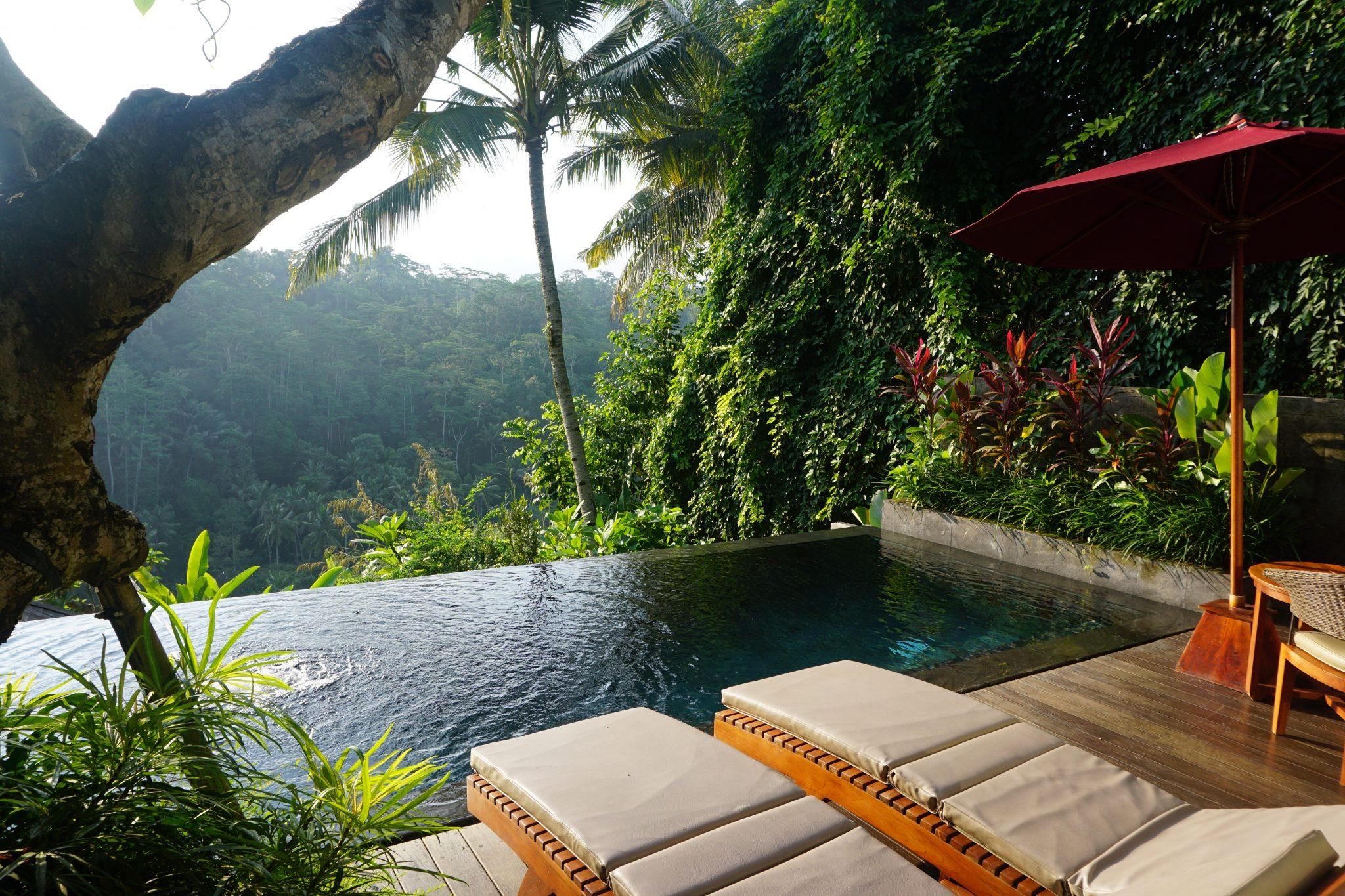 Bali, villa, plunge pool, infinity pool, Black Penny, Ubud