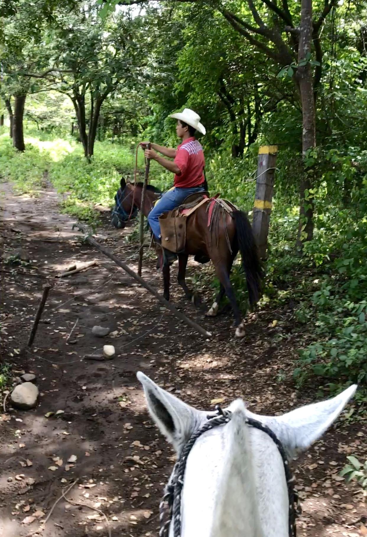 horseback riding rincon de la vieja, liberia, costa rica, cowboy, horseback riding