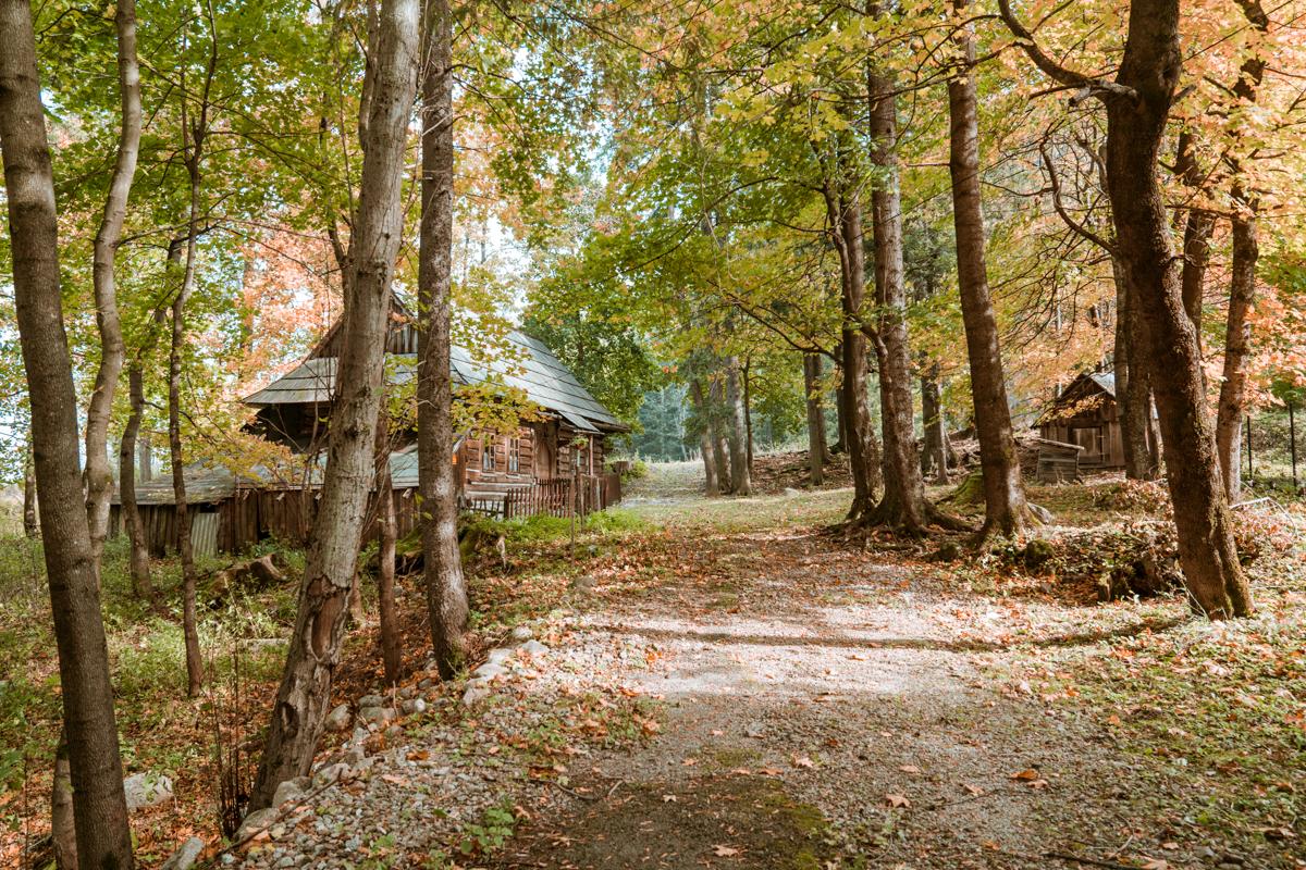 zakopane cabin