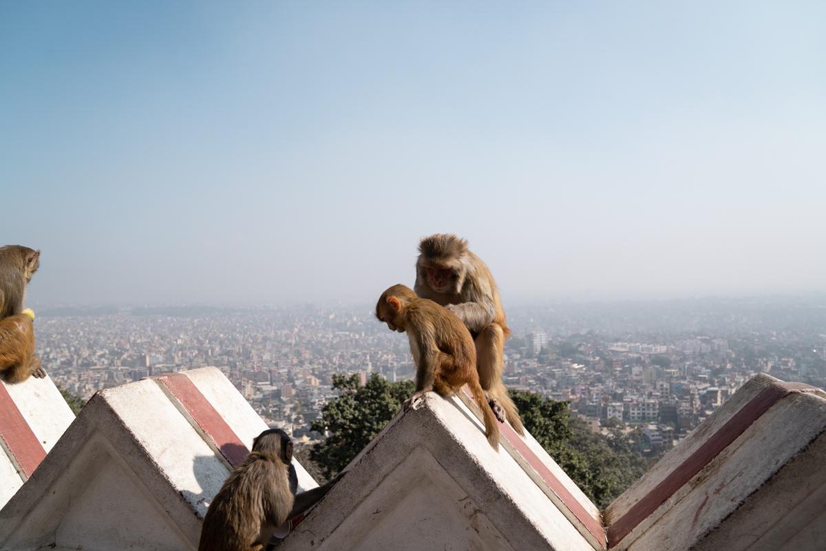 Swayambhunath Stupa view